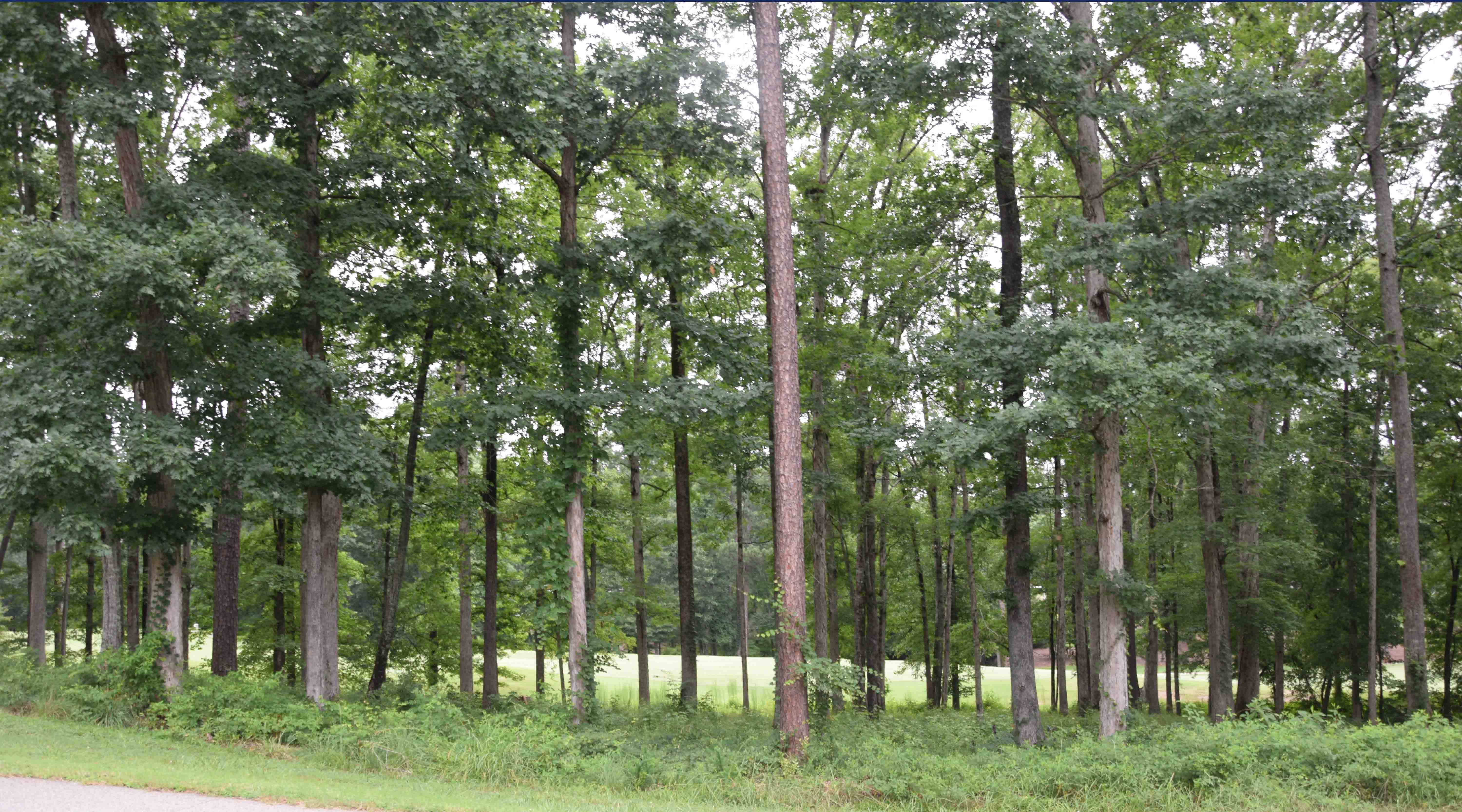 1040 Turnberry Circle Golf Front Homesite