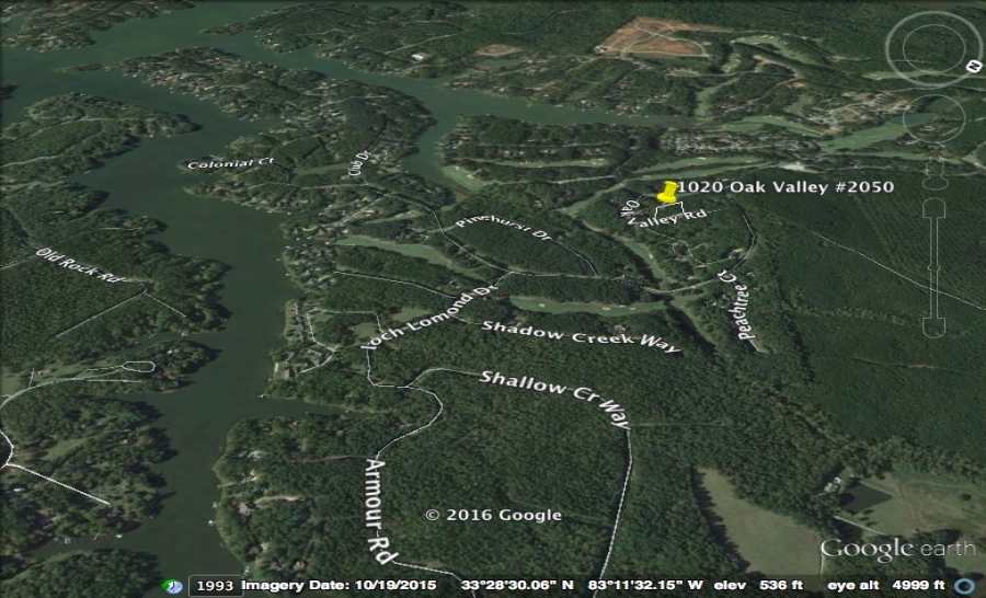 1020 Oak Valley Pin zoom out.jpg