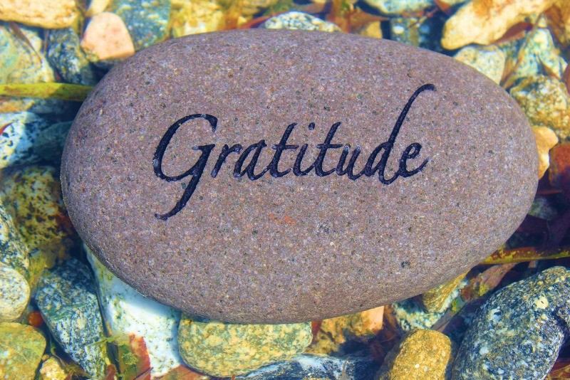 5 Reasons to Be Grateful During National Gratitude Month